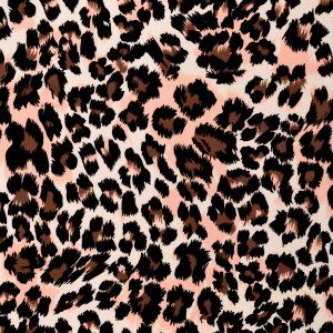 Leopard Print Spandex