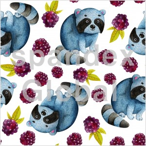 Racoons and Blackberries