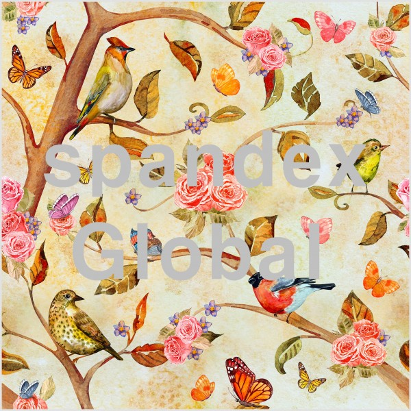 Spring Birds and Flowers