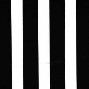 40mm Black Stripe Print Spandex