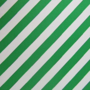 Diagonal Stripes on White