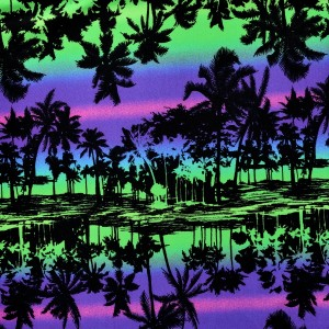 Tropical Sunset Print Spandex